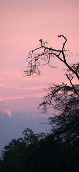 Ishasa Uganda Marie Kantermo